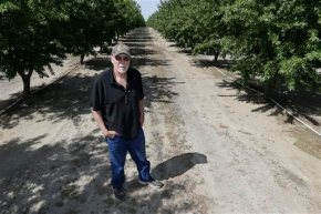 Almonds get roasted in debate over California water use