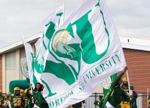 rp_primary_NSU_Flag