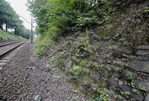 "The potencial site where a Nazi gold train is believed to be hidden, near the city of Walbrzych, Poland, Friday, Aug. 28, 2015. Poland's Deputy Culture Minister Piotr Zuchowski said Friday he has seen an image made by ground-penetrating radar that seemed to prove the discovery of an armored Nazi train missing in southwestern Poland since World War II, and is ""more than 99 percent certain that this train exists."". (AP Photo/Str)--POLAND OUT"