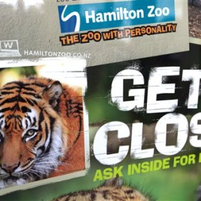 New Zealand zoo won't euthanize tiger that killed zookeeper