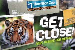 A tiger advertising sign is seen outside Hamilton Zoo after a female zookeeper was killed by one of the tigers at the zoo in Hamilton, New Zealand Sunday Sept. 20, 2015. Police said the woman died at the scene, and zoo asked all visitors to leave and close its doors until Thursday.(Nick Reed/New Zealand Herald via AP) NEW ZEALAND OUT, AUSTRALIA OUT
