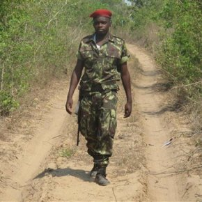 Mozambique plans to turn old ammo depot into naturereserve