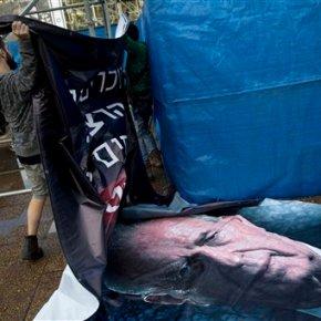 20 years later, little left of Yitzhak Rabin's peacelegacy