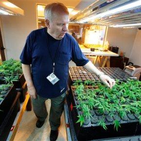 Pot legalization bid in California gains powerfulbackers