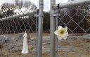 In this Nov. 13, 2015 photo, items decorate a gate surrounding the site of The Station nightclub fire that killed 100 people in West Warwick, R.I., in 2003. The Station Fire Memorial Foundation said that $1.3 million of the $2 million needed has been raised to complete a permanent memorial at the site.  (AP Photo/Michelle R. Smith)
