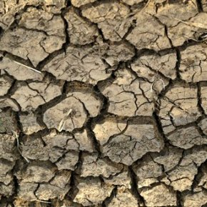 South Africa's nine provinces hit by drought