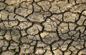 A cracked earth that three weeks ago was the bottom of a reservoir at Riaan du Plessis's farm in Groot Marico, South Africa, Thursday, Nov. 12, 2015. Six of South Africa's nine provinces, including the North West province where the Du Plessis have a farm, have been hit by drought, with three provinces declared disaster areas. (AP Photo/Themba Hadebe)