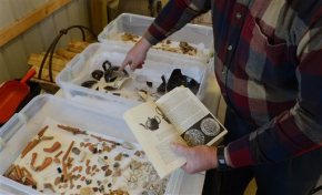 Brothers find colonial artifacts on Virginiafarm