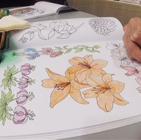 Libraries, meetup groups get into adult coloring craze