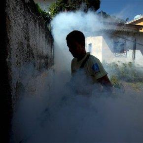The Latest: WHO declares Zika virus internationalemergency