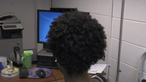 Untangling the natural hair knot, from root totip
