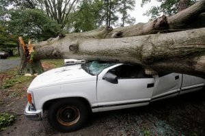 William Pearson of Brookside Blvd. lost his work truck when a tree fell and crushed it, Friday, June 17, 2016 in Henrico County, Va. A severe thunderstorm with heavy rains downed trees and knocked out power to more than 160,000 customers in Virginia.  (James H. Wallace/Richmond Times-Dispatch via AP) MANDATORY CREDIT