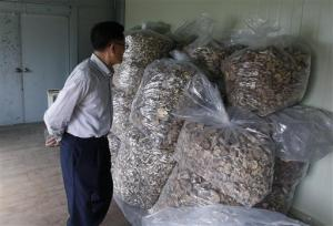 In this June 1, 2016 photo, scientist Lee T.B. who fled North Korea to South Korea, looks at packs of mushrooms at his newly-built laboratory in Hwaseong, South Korea. Lee has studied the fungi for decades and has created products with them that he believes may fight diseases including cancer, which killed his wife more than 25 years ago. He felt his work was constrained by, and ultimately even in some danger from, the North Korean government, so he fled to South Korea in 2005. (AP Photo/Lee Jin-man)
