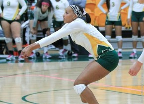 Efficient Appalachian State, Radford Top NSU by 3-0 Scores