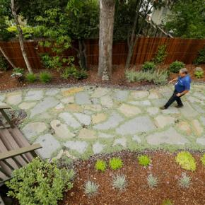 In California, a $350 million social experiment over lawns