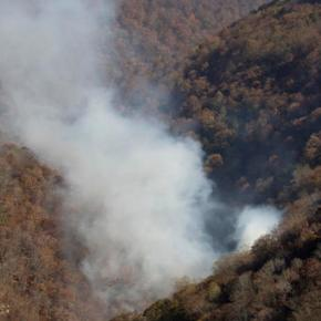 Southern fires rage with 41.6 million now living in drought