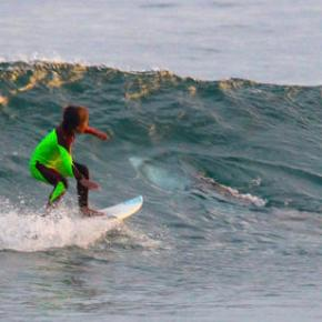 Young Aussie surfer photo bombed by shark that sharedwave
