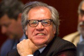 OAS head urges bloc suspend Venezuela overelections