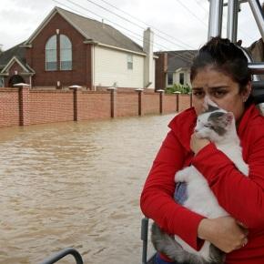 Harvey swamps evacuee shelter on Texas, Louisianaborder