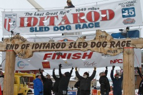 The Latest: Iditarod champ denies giving dogs banned drugs